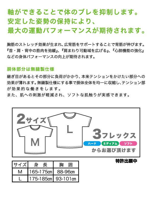GT1411_info2
